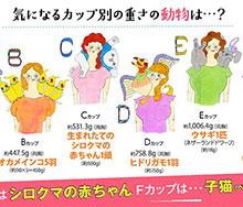 Japanese_lingerie_firm220